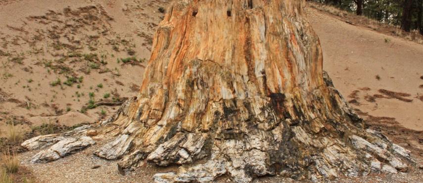 geoparka1