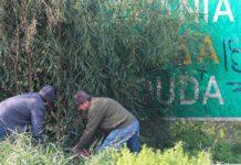 a7aaf40a6fc Χανιά: Συμβολικός καθαρισμός του ΒΟΑΚ από το Γιάννη, το Νίκο και την  Ειρήνη| φωτο
